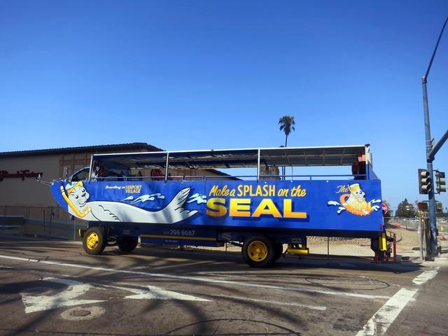San Diego Seal Tours_edit