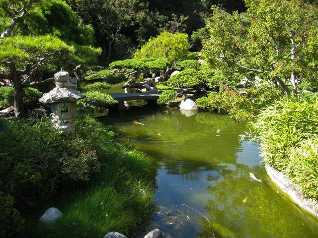 日本庭園内 7_edit