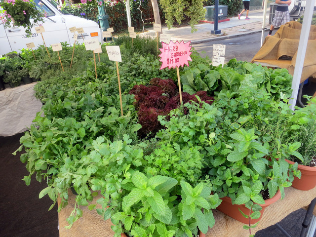 Herb Gardens 2_edit