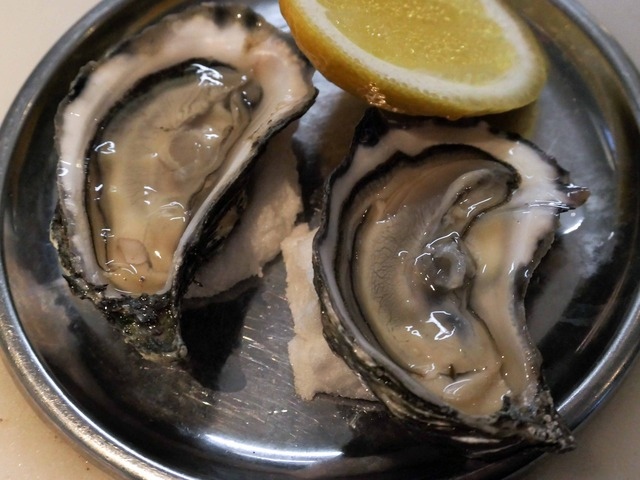 Rock Oysters (The Rusty Wire) 3_edit