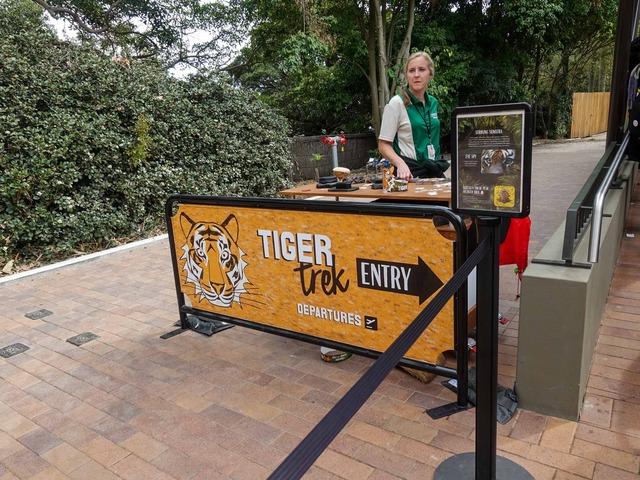 Tiger Trek 1_edit