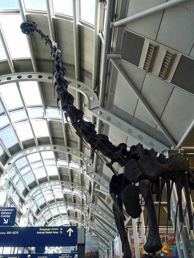 ブラキオサウルスの骨格標本 6_ターミナル 1 Bゲート_edit