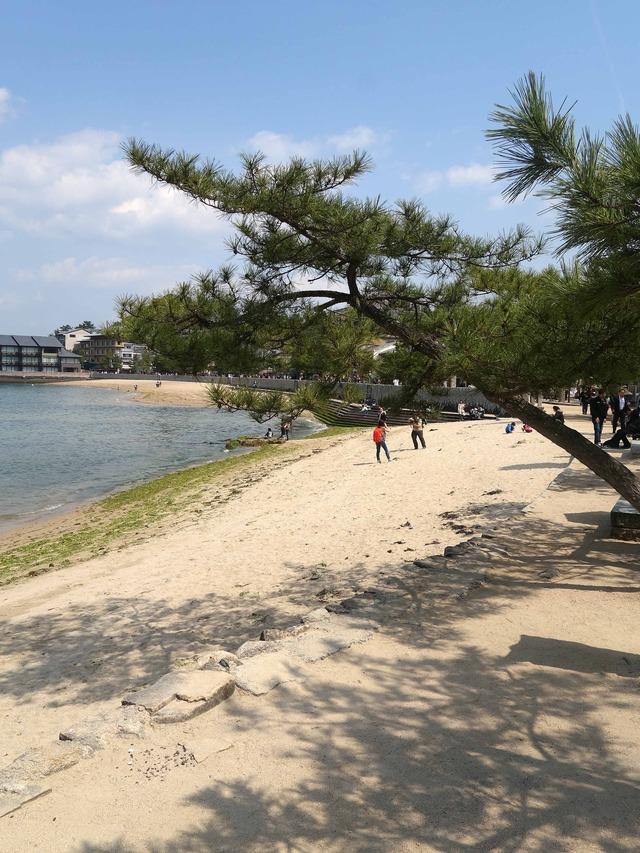 御笠浜 2_edit