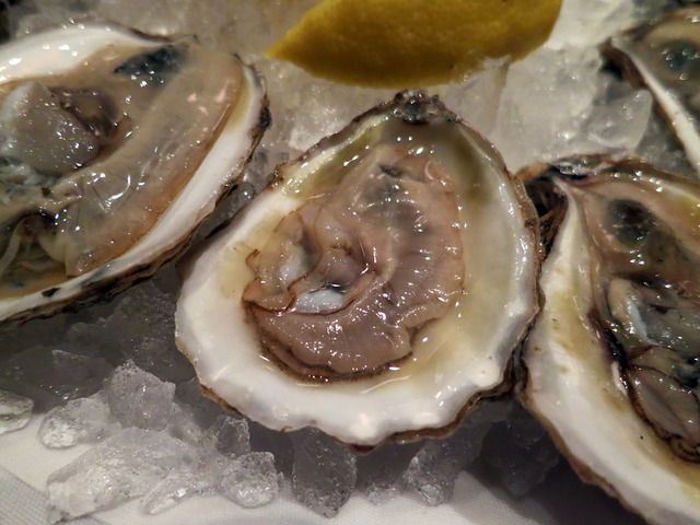 Blue Point Oysters 6_edit