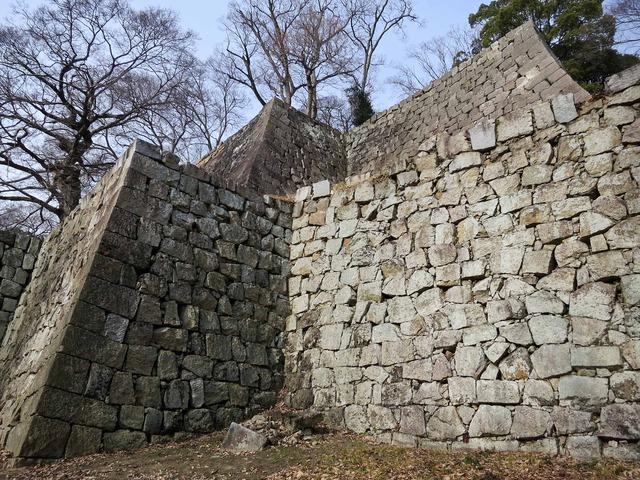 三の丸石垣 9_edit