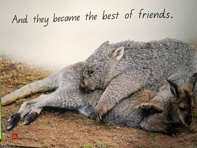 Wombat's Secret 12_edit