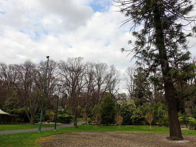 フィッツロイ庭園 12_edit