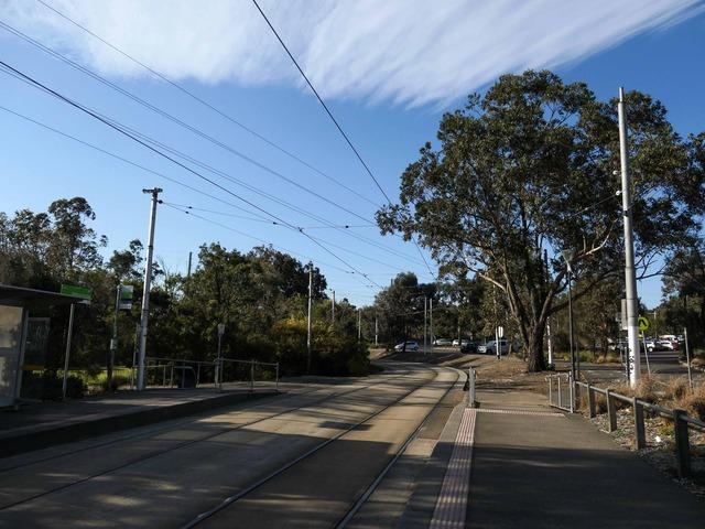 トラム(Melbourne Zoo) 3_edit