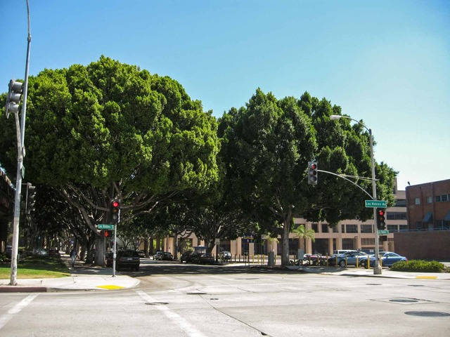 Green St & Los Robles Ave_edit