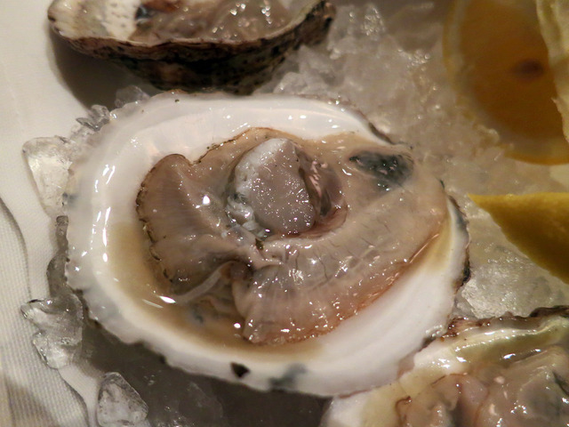 Blue Point Oysters 4_edit