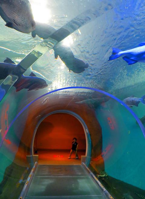 水中トンネル 2_edit