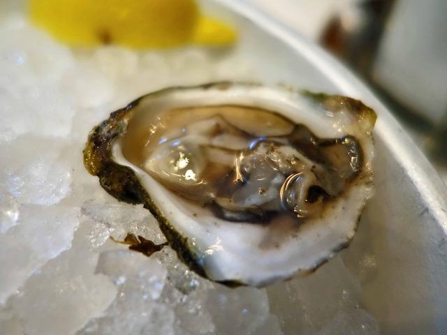 Fresh Oysters 8_edit