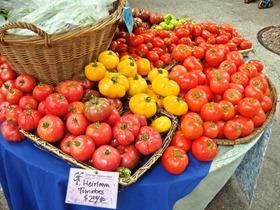 Heirloom Tomato 1_edit
