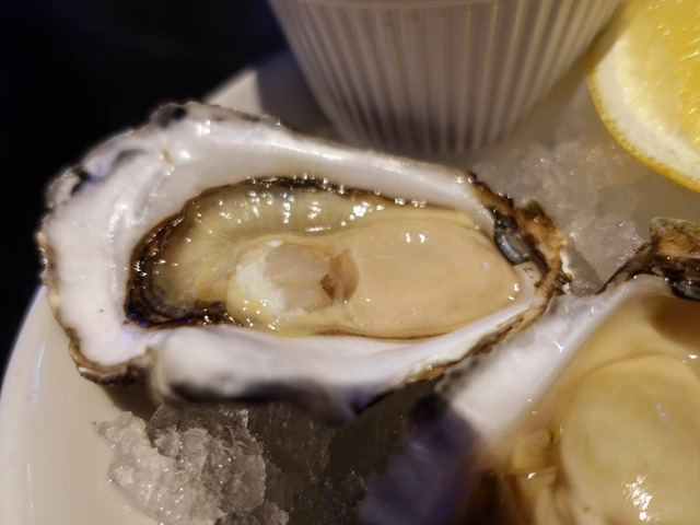 Sydney Rock Oysters 4_edit