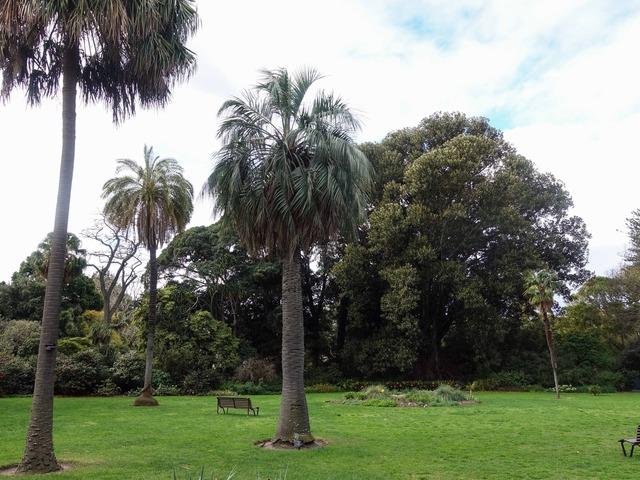 王立植物園 12_edit