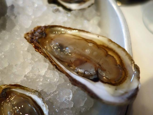 Fresh Oysters 7_edit