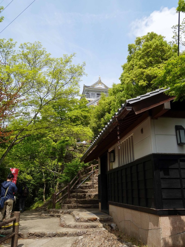 資料館から岐阜城を望む 1_edit