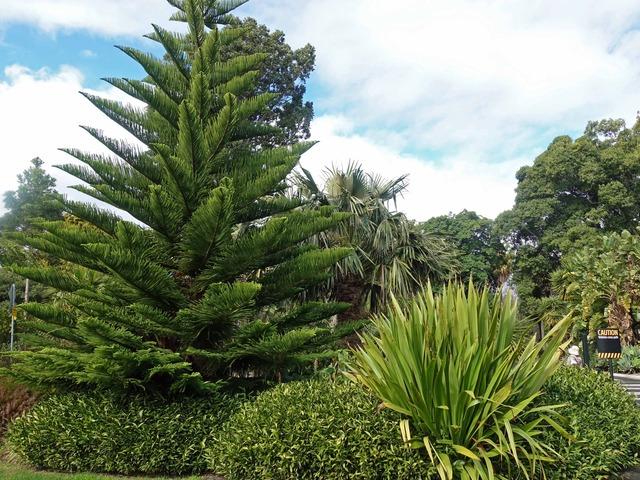 王立植物園 5_edit