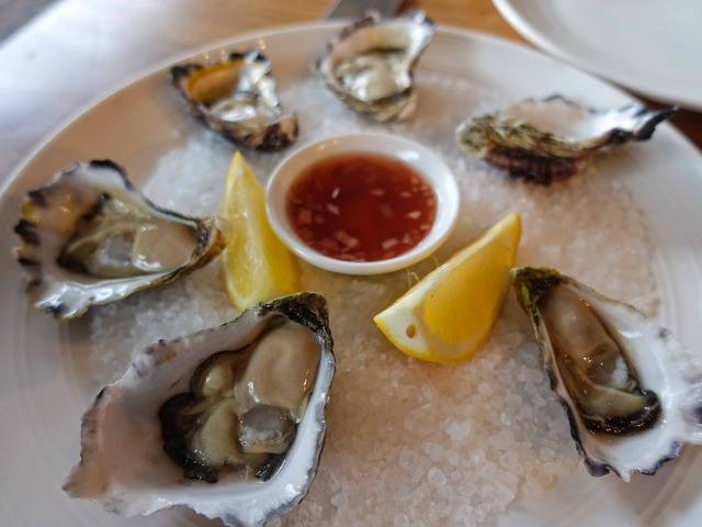 Sydney Rock Oysters 1_edit
