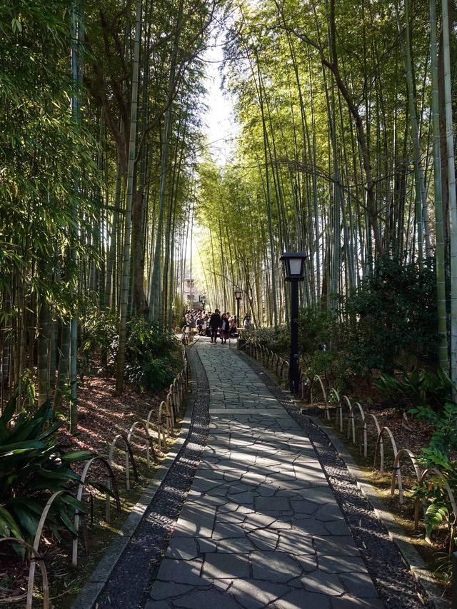 竹林の小径 4_edit