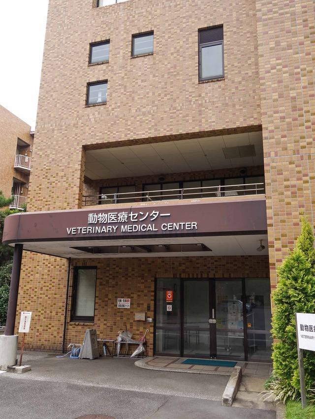 動物医療センター 3_edit