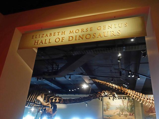 恐竜のホール_edit