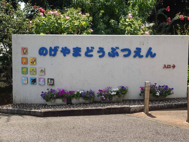 野毛山動物園 1_edit