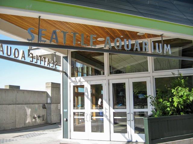 シアトル水族館 3_edit