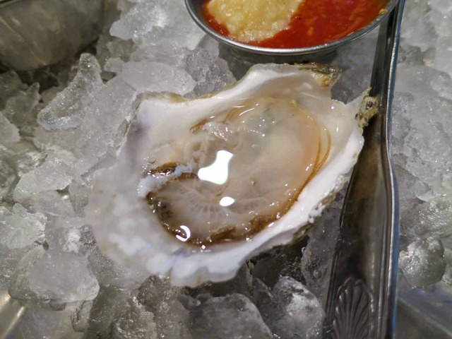 Cape Cod Raw Oysters 4_edit