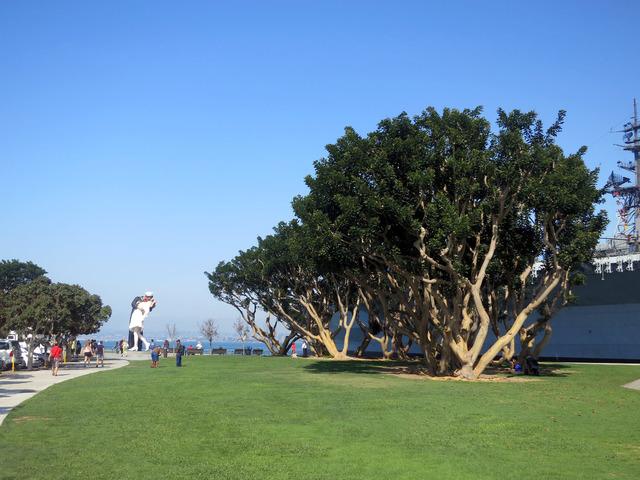 Tuna Harbor Park 1_edit