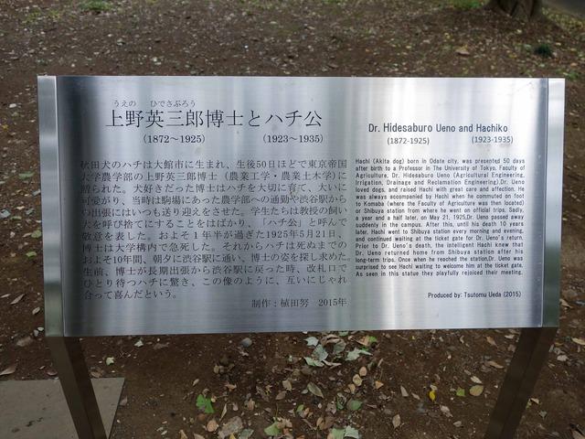 上野英三郎博士とハチ公 6_edit
