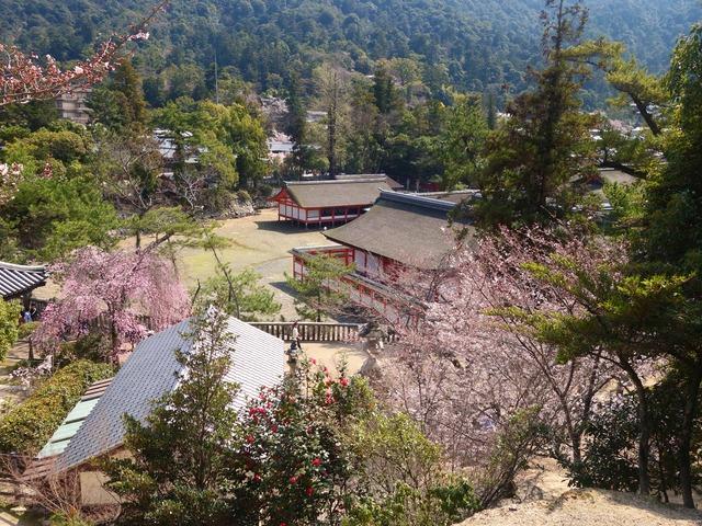 塔の岡から厳島神社を望む 2_edit