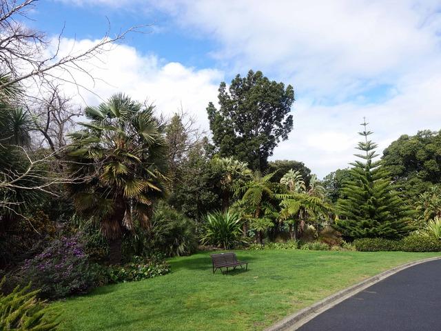 王立植物園 4_edit