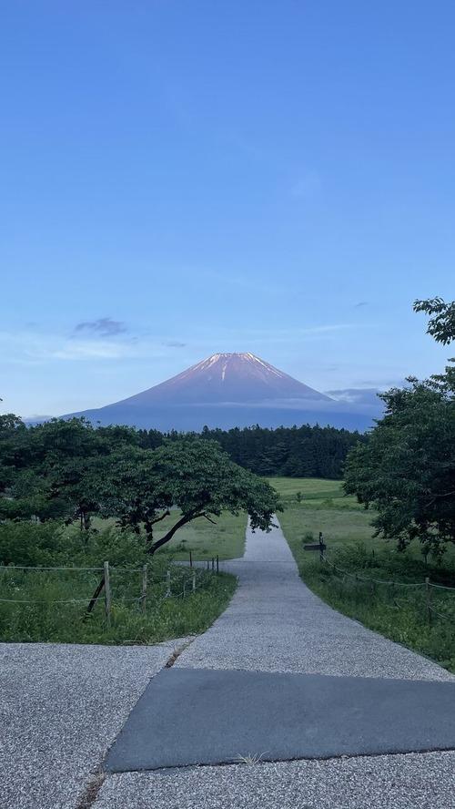 朝霧の富士山