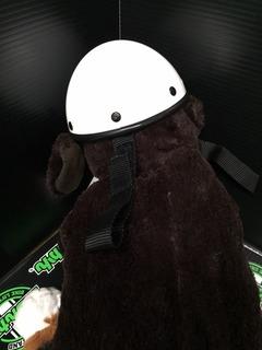 犬用ヘルメット05
