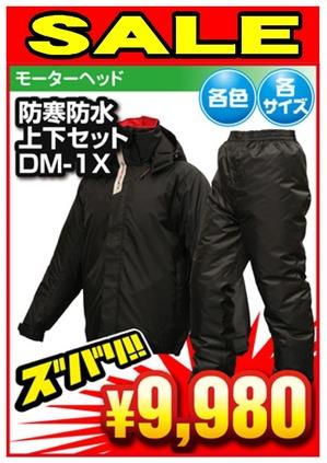 DM2-DM1X