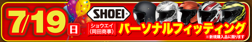 19日ヘルメット