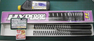 hppzeph1100