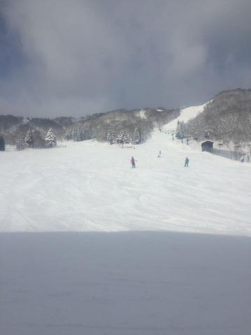 雪山 緑2りんかん