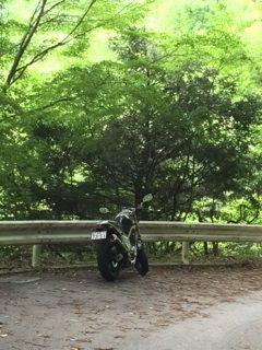 裏ヤビツバイク
