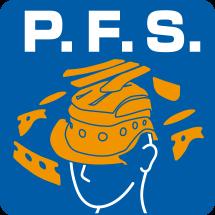 菊陽2りんかんショウエイヘルメットPFS