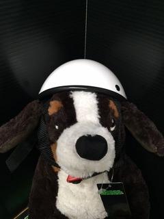 犬用ヘルメット04