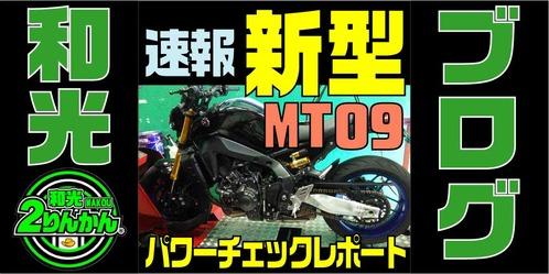 MT09-PCR