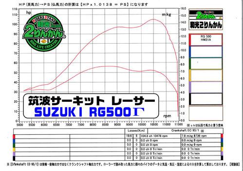 RG500 PCR