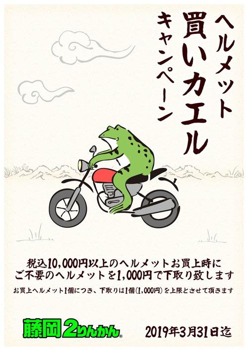 ヘルメット蛙