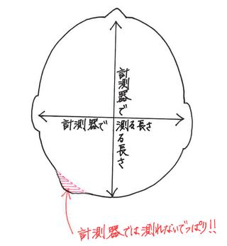 菊陽2りんかん SHOEI10
