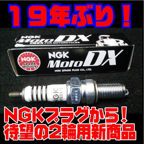 NGK DX 500x500