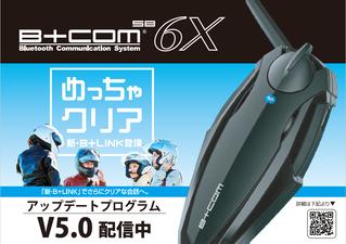 菊陽2りんかん 6X 5.0