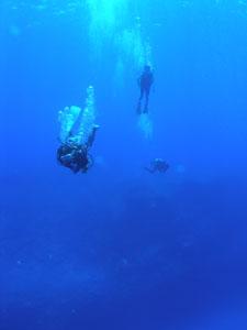 波照間ブルー2