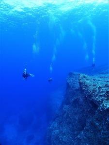 波照間ブルー